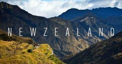 Curiosidades da Nova Zelândia, confira