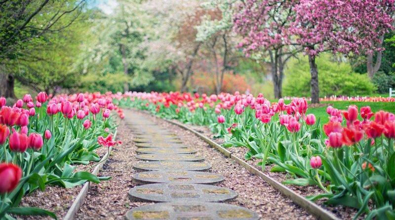 Jardim em Inglês