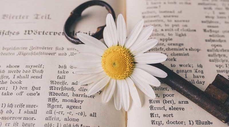 O que são expressões Idiomáticas em Inglês