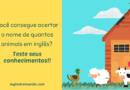 Nome dos Animais em inglês: Teste seus conhecimentos